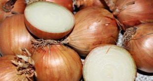 6 Manfaat Bawang Bombay untuk Kesehatan